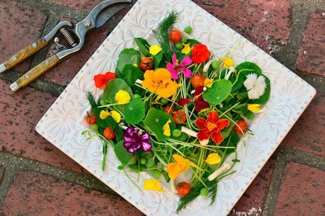 jedle kvety